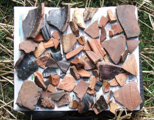 Selection of sherds from field walking